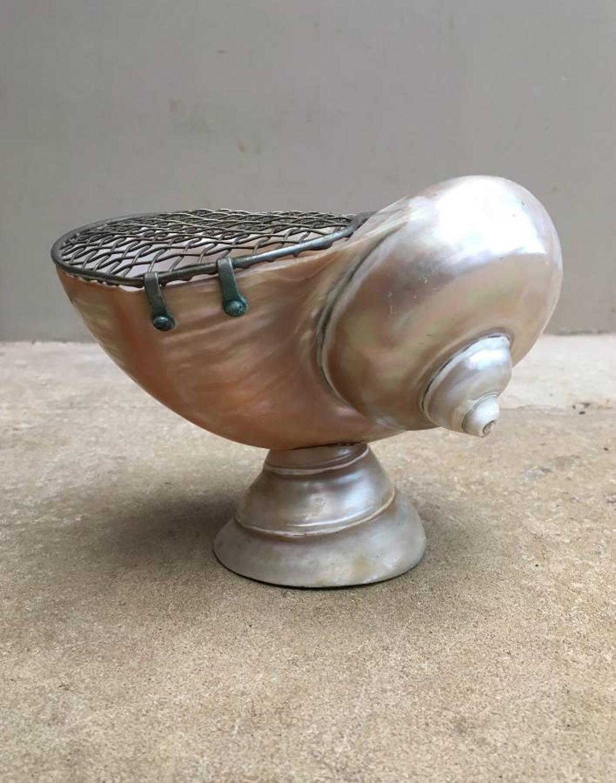 Early 20th Century Decorative Shell - Posy Vase