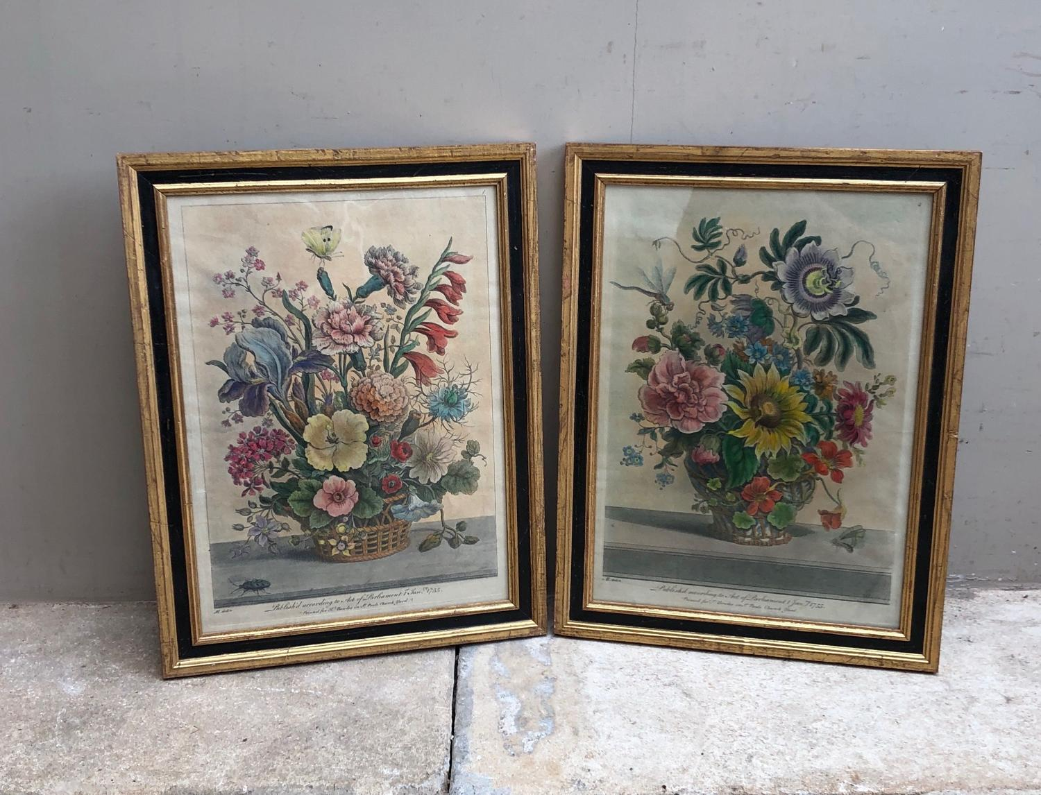 Two 18th Century Hand Coloured Floral Engravings Later Framed