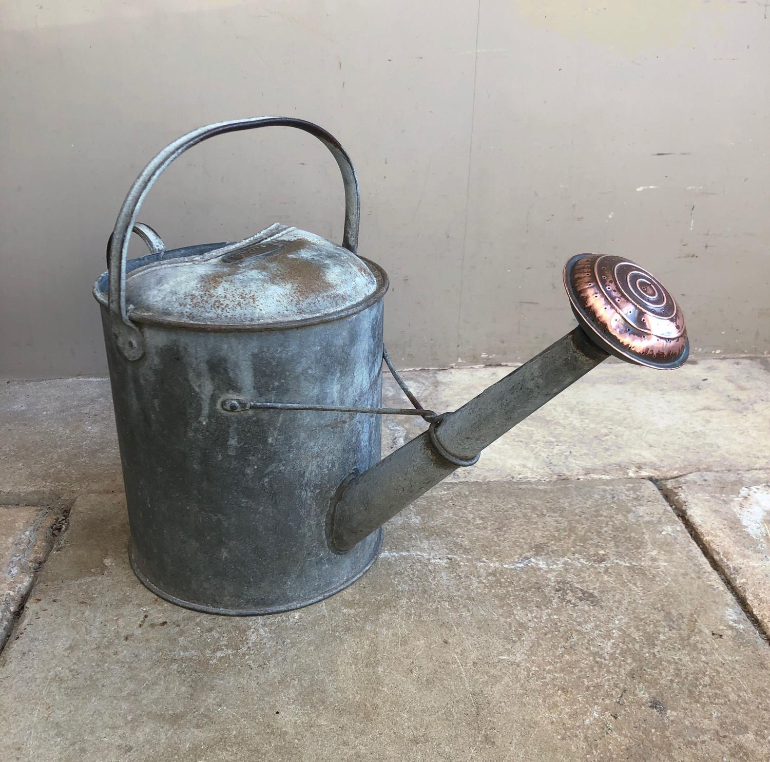 Large Galvanised Watering Can with Copper Rose & 2 Gallon Plaque