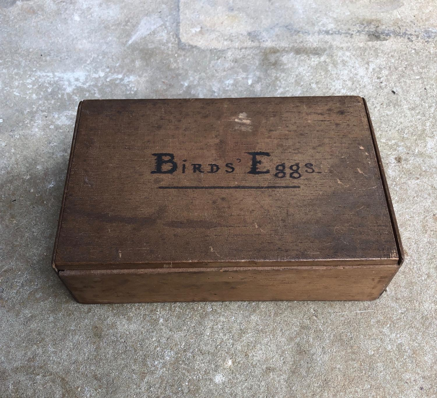 Antique Cigar Box used to keep Birds Eggs - Lovely Condition