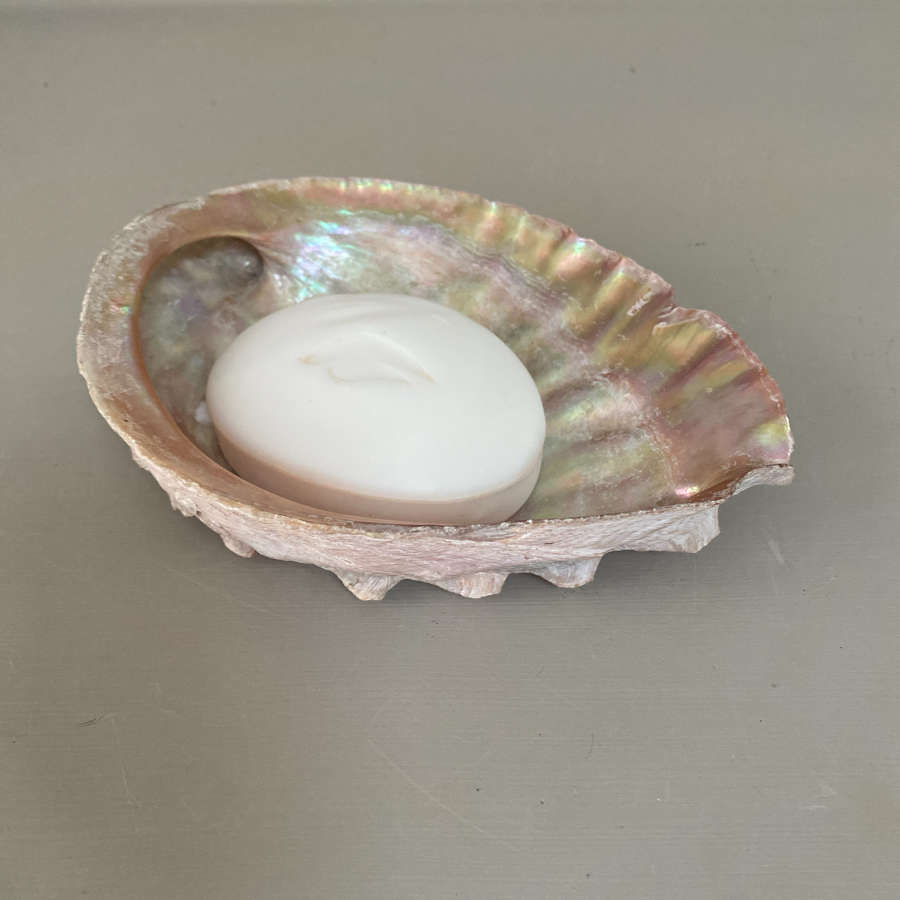 Perfect Size Soap Holder Shell
